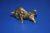 Бык латунная фигурка, символ туземуна - Изображение 3